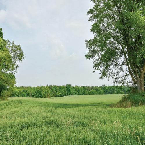 Puslinch Farm Land